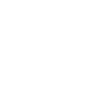 Fish & Conch Badge
